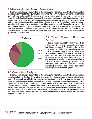 0000091698 Word Template - Page 7