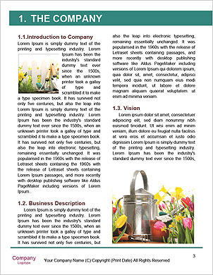 0000091705 Word Template - Page 3