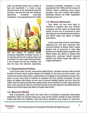 0000091705 Word Template - Page 4