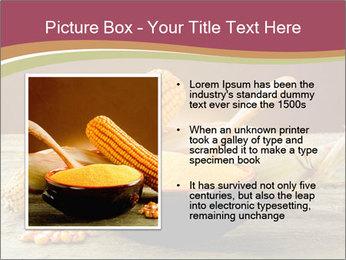 Maize flour PowerPoint Template - Slide 13