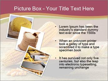 Maize flour PowerPoint Template - Slide 17