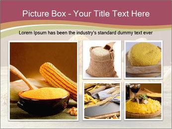 Maize flour PowerPoint Template - Slide 19