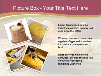 Maize flour PowerPoint Template - Slide 23