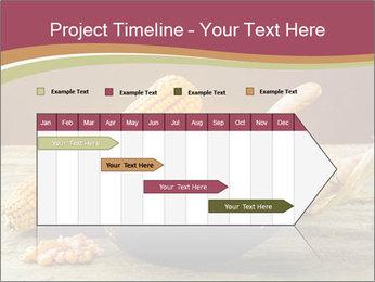 Maize flour PowerPoint Template - Slide 25