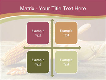 Maize flour PowerPoint Template - Slide 37