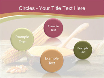 Maize flour PowerPoint Template - Slide 77