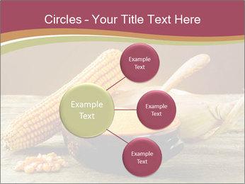 Maize flour PowerPoint Template - Slide 79