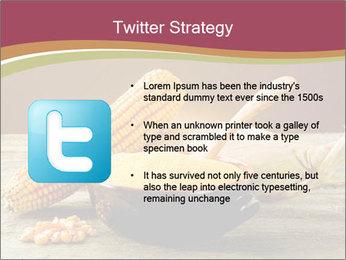 Maize flour PowerPoint Template - Slide 9