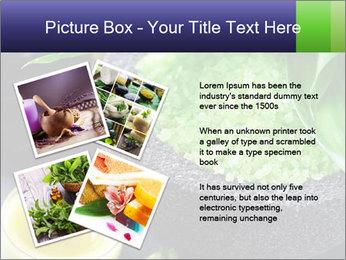 Spa PowerPoint Template - Slide 23