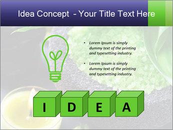 Spa PowerPoint Template - Slide 80