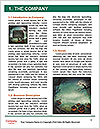 0000091713 Word Templates - Page 3