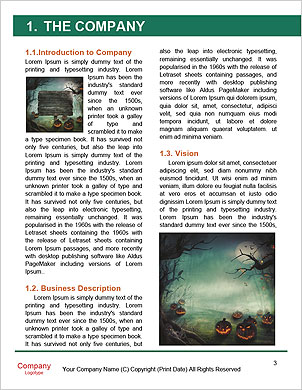 0000091713 Word Template - Page 3