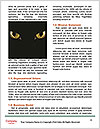 0000091713 Word Templates - Page 4