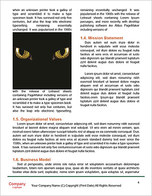 0000091713 Word Template - Page 4