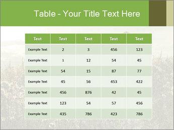 Girl in field PowerPoint Template - Slide 55