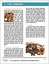 0000091734 Word Template - Page 3