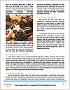 0000091734 Word Template - Page 4