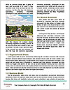 0000091738 Word Template - Page 4