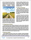 0000091739 Word Templates - Page 4