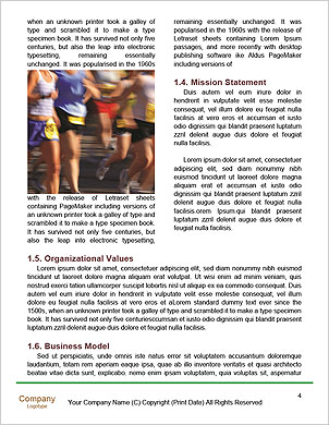 0000091742 Word Template - Page 4