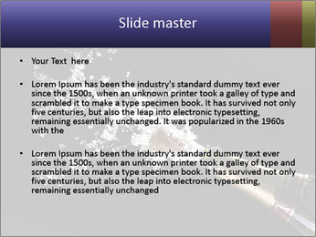 Classic champagne PowerPoint Template - Slide 2