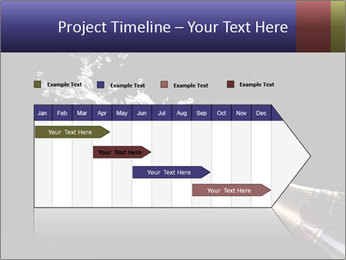 Classic champagne PowerPoint Template - Slide 25