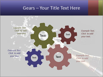 Classic champagne PowerPoint Template - Slide 47