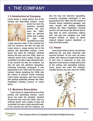 0000091743 Word Template - Page 3