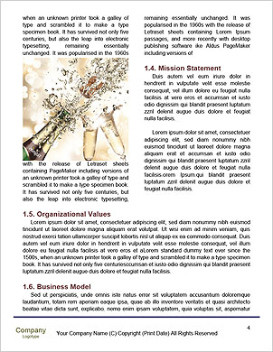0000091743 Word Template - Page 4