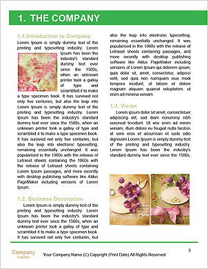 0000091747 Word Template - Page 3