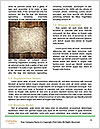 0000091747 Word Template - Page 4