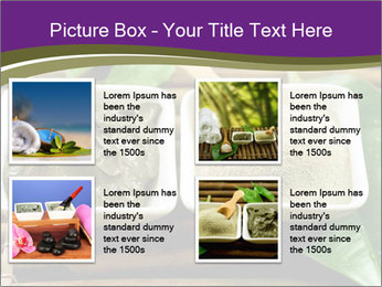 Spa PowerPoint Templates - Slide 14
