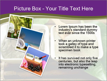 Spa PowerPoint Templates - Slide 17