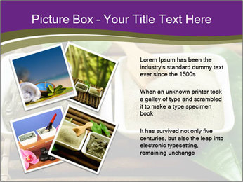 Spa PowerPoint Templates - Slide 23