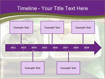 Spa PowerPoint Template - Slide 28