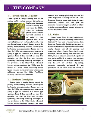 0000091752 Word Template - Page 3