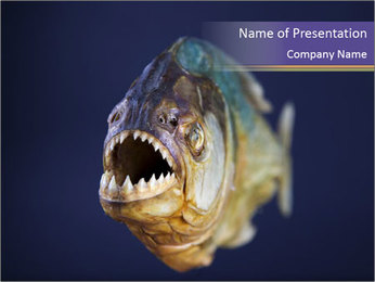 Piranha PowerPoint Template - Slide 1