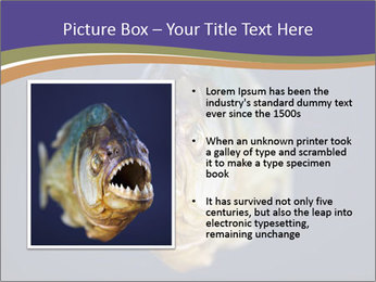 Piranha PowerPoint Template - Slide 13