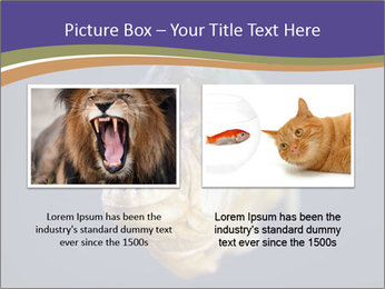 Piranha PowerPoint Template - Slide 18