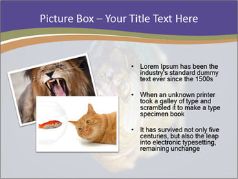 Piranha PowerPoint Template - Slide 20