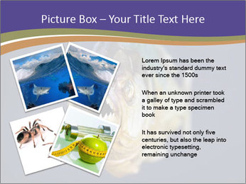 Piranha PowerPoint Template - Slide 23