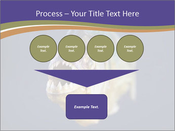 Piranha PowerPoint Template - Slide 93