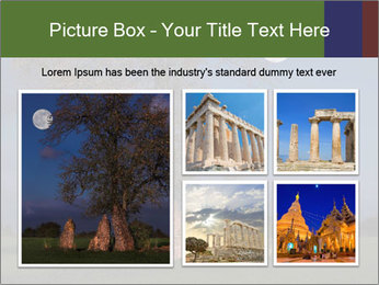 Late evening shot PowerPoint Template - Slide 19