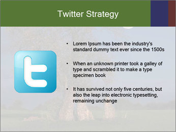 Late evening shot PowerPoint Template - Slide 9
