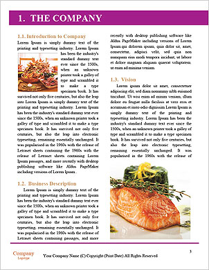 0000091762 Word Template - Page 3