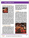 0000091764 Word Template - Page 3