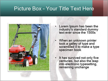 Cat PowerPoint Template - Slide 13