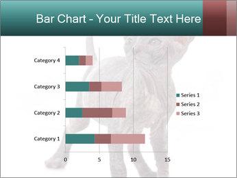 Cat PowerPoint Template - Slide 52
