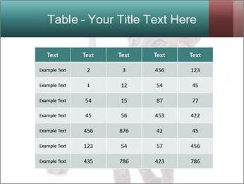 Cat PowerPoint Template - Slide 55