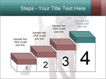 Cat PowerPoint Template - Slide 64